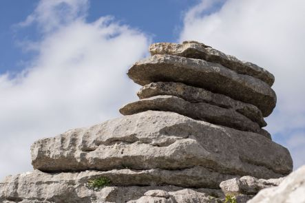 Andalusia2018_112_ElTorcal