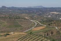 Andalusia2018_123_Olvera