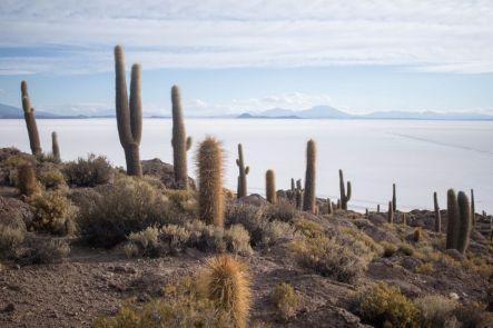 Bolivia_Uyuni_061