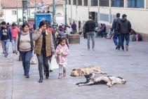 Peru_Cusco_159