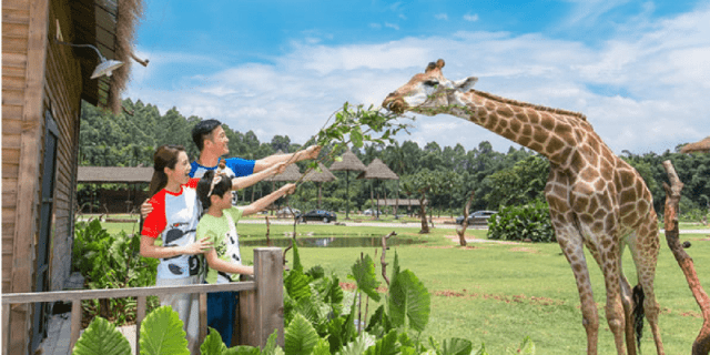 Kids play in Chimelong Safari Park in Guangdong