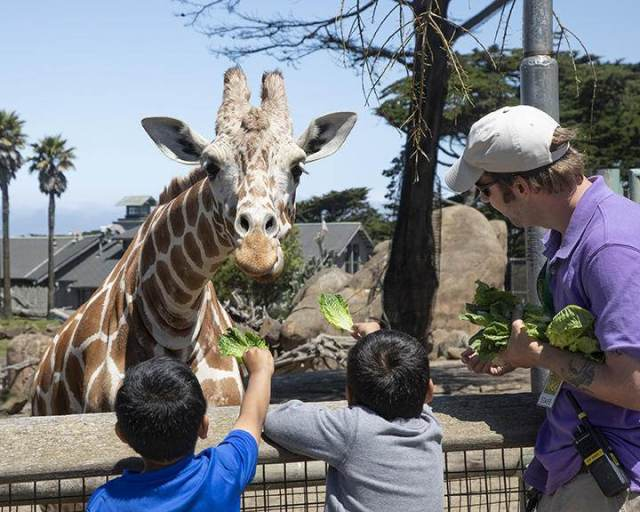 San Francisco Zoo & Gardens