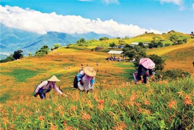 Hua Lien Farmers