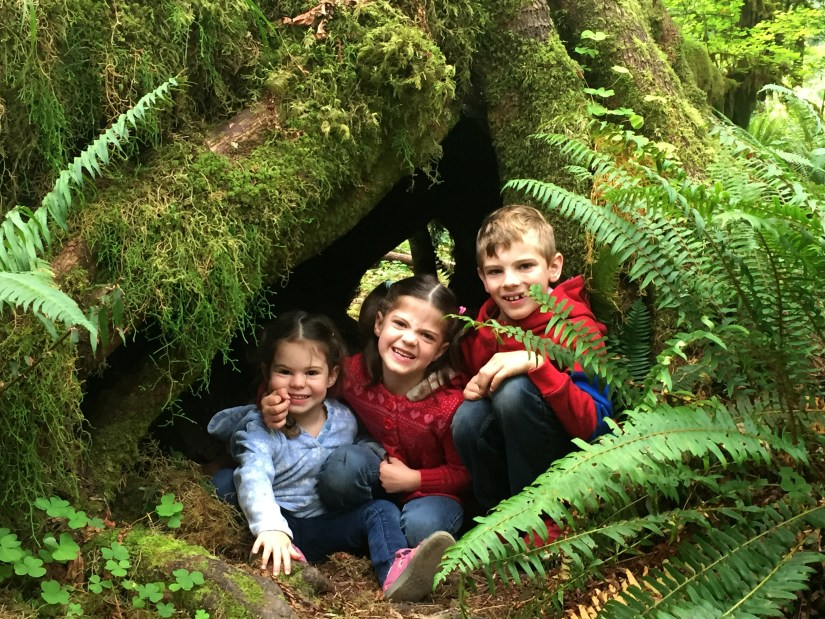 3 kids are sitting under the trees at Olympic National Park.
