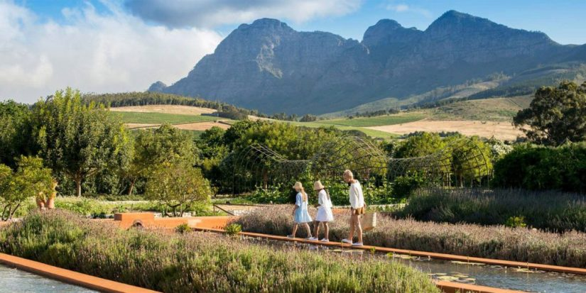 Mother and kids are walking at Franschhoek valley