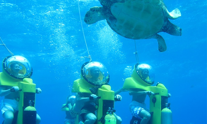 people are watching the turtle when join in Submarine Scooter Underwater Adventure in Oahu Island