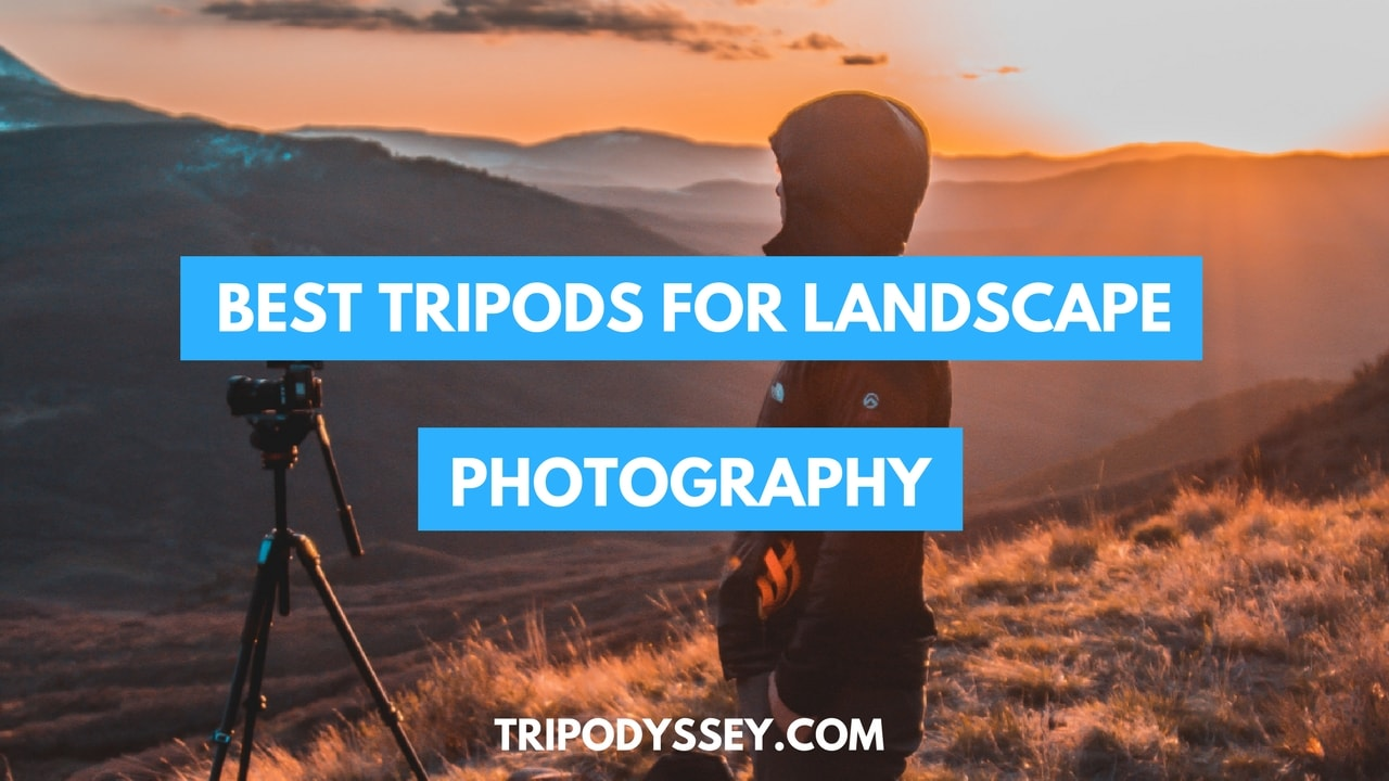 Best Tripods For Landscape Photography cover