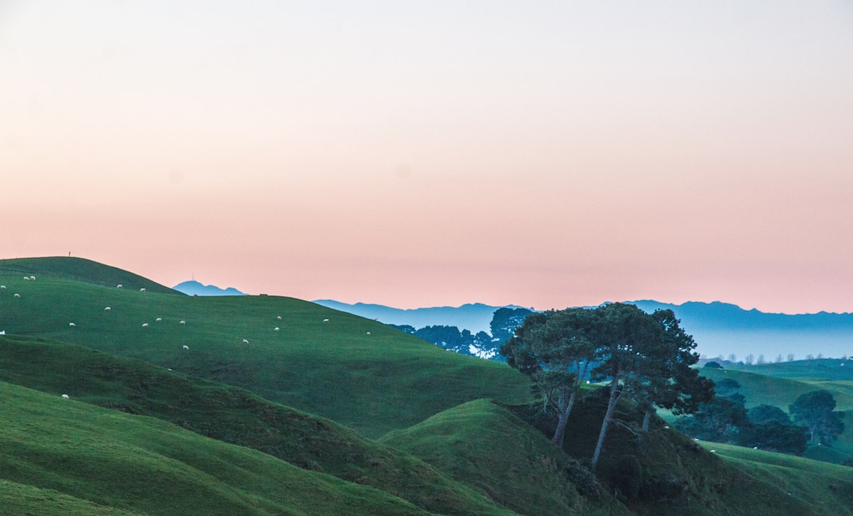 photo taken with Manfrotto Compact Action Tripod new zealand hills