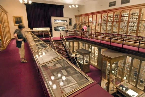 Visiting the Mütter Museum in Philadelphia, Pennsylvania