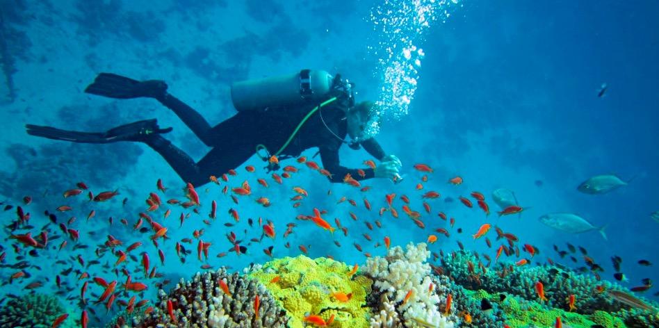 Murudeshwar Scuba Diving