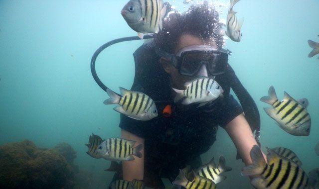 scuba diving in tarkarli