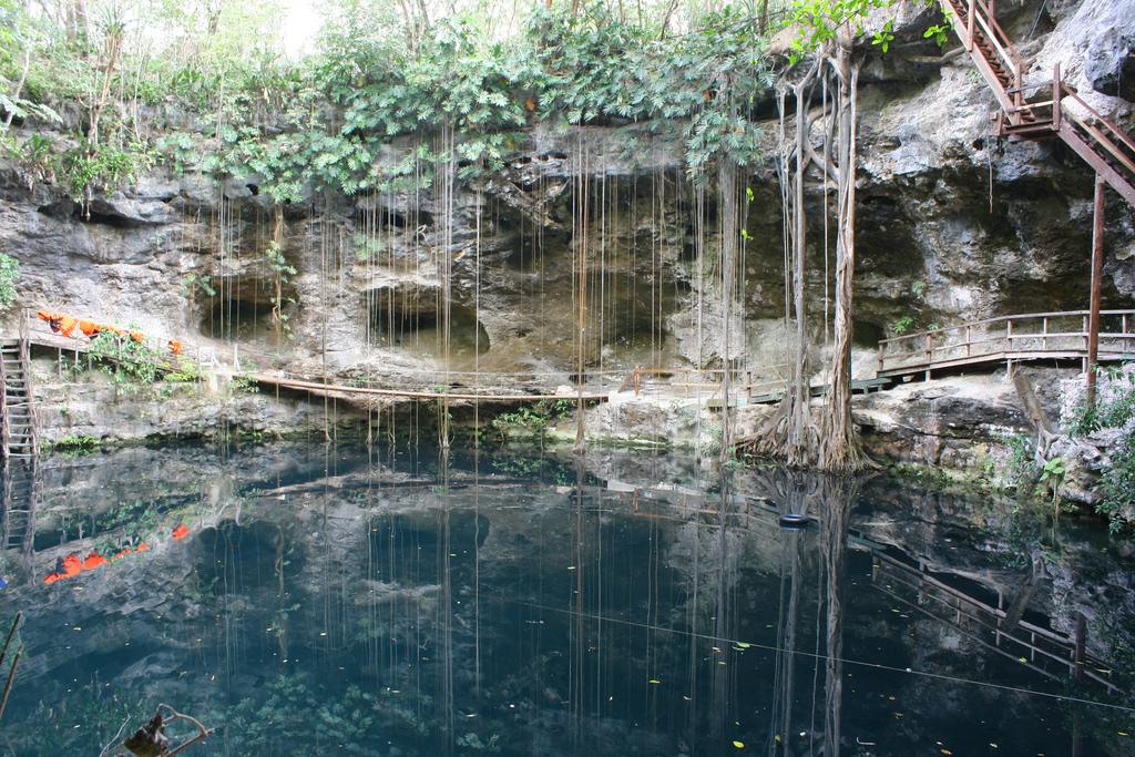 Cenote X-canche, Yucatan