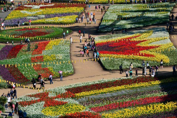 Floriade (Canberra, Australia) flower festivals