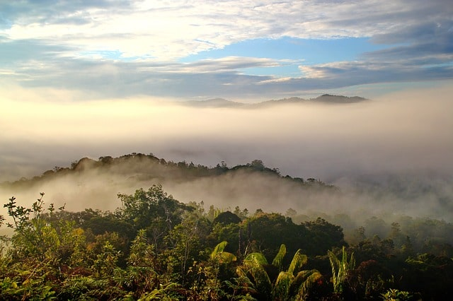 Borneo: Largest Islands In The World