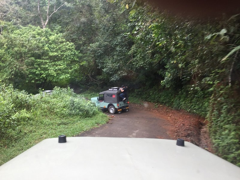 Wayanad: Road Trips from Bangalore