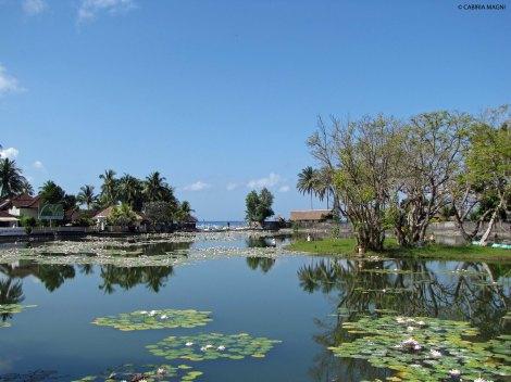 Lagoon @Candidasa