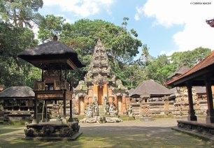 Sacred Monkey Forest - Ubud