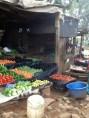 Malawi february 2013