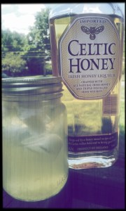 Whiskey Honey Lemonade