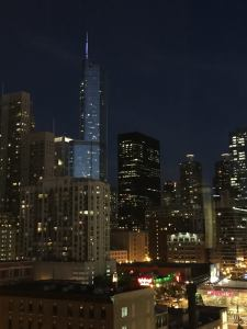 Chicago Night View