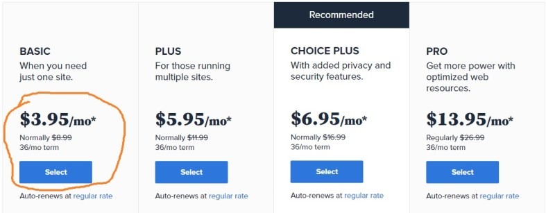 Bluehost pricing plan selection