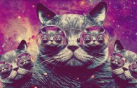 Trippy Cat – Minimal Techno Mix