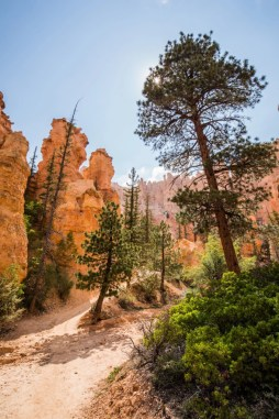 20150624 - Bryce National Park-39
