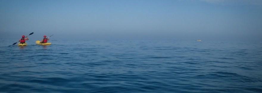 Sea Kayaking La Jolla California