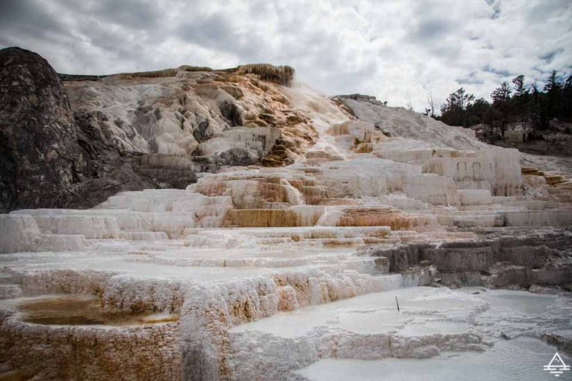 Mammoth Hot Springs Terraces in Yellowstone National Park