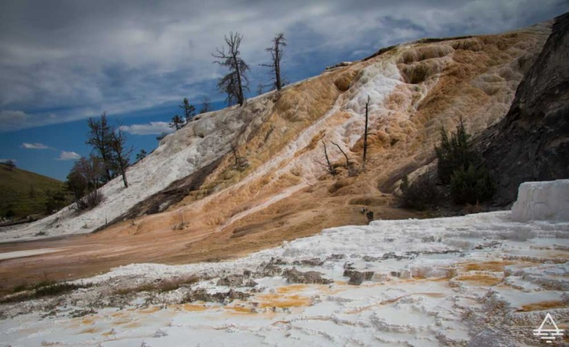 Yellowstone National Park Mammoth Hot Springs-5 trip