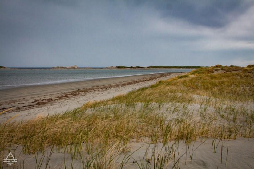 Beach on a Newfoundland Vacation