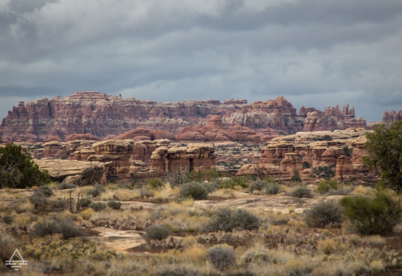 Canyonlands Needles View from Pothole Point
