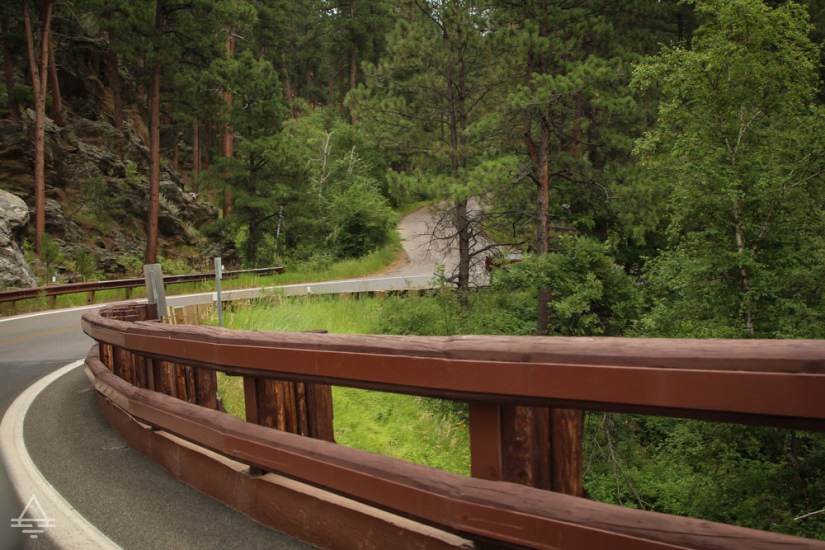 Roadway in Custer State Park