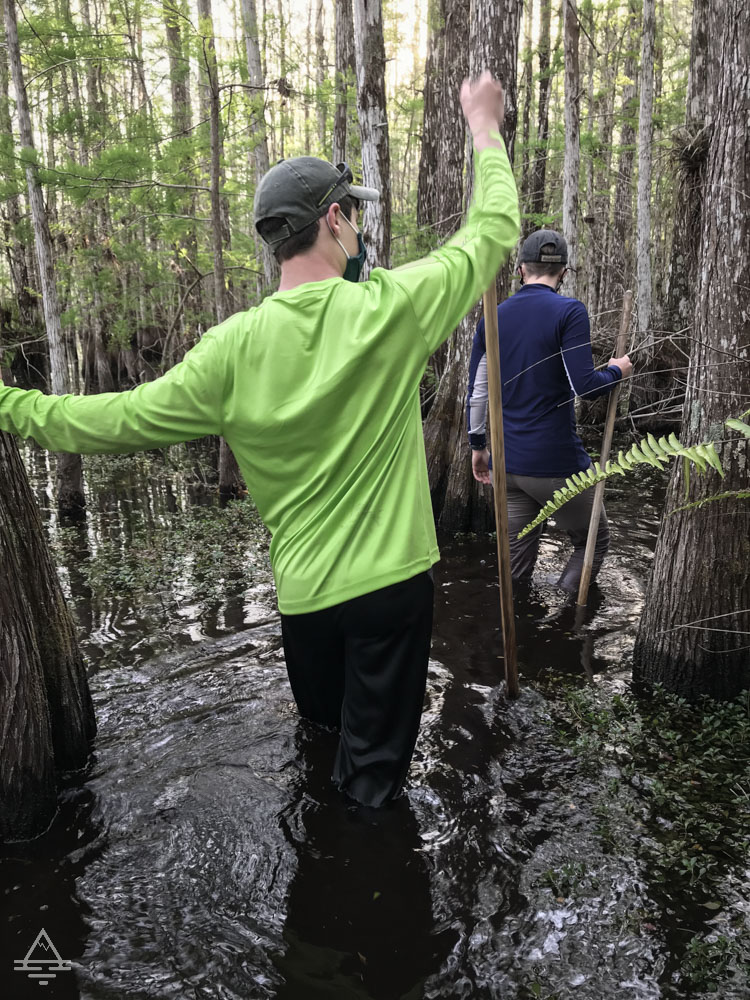 Boy walking in a cypress swamp