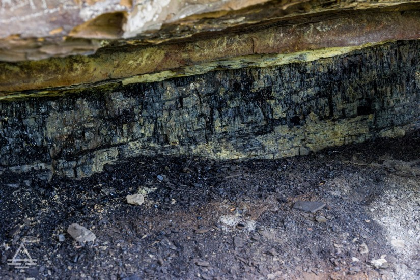Coal in the rocks in New River Gorge National Park