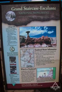 toadstool-trail-sign-trip