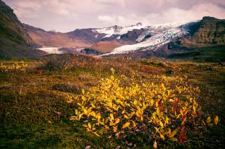 3.1 Skaftafell National Park - Iceland itinerary for 10 days (2)