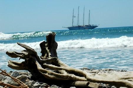 driftwood and schooner, MA