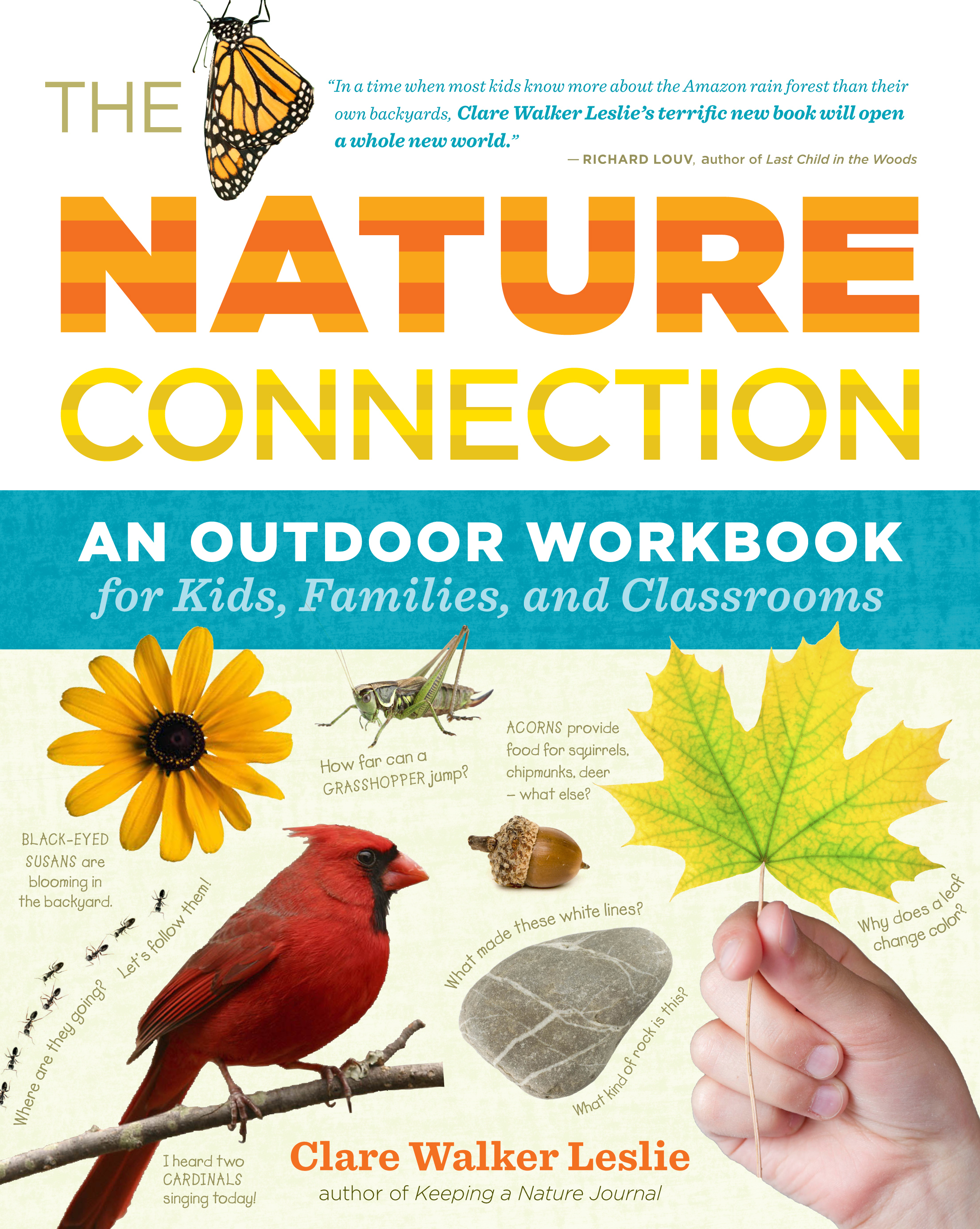 The Nature Connection A Book To Get Kids Into The Natural World