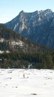 Hiking, Postalm, Austria