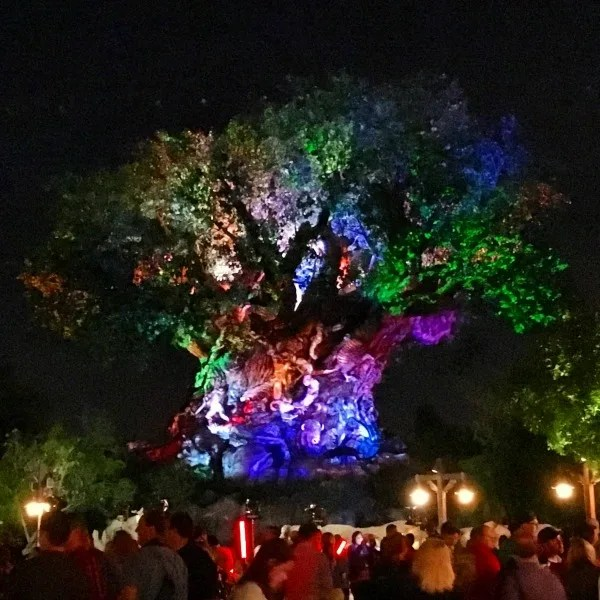 Disney Animal Kingdom at Night - Tree of Life