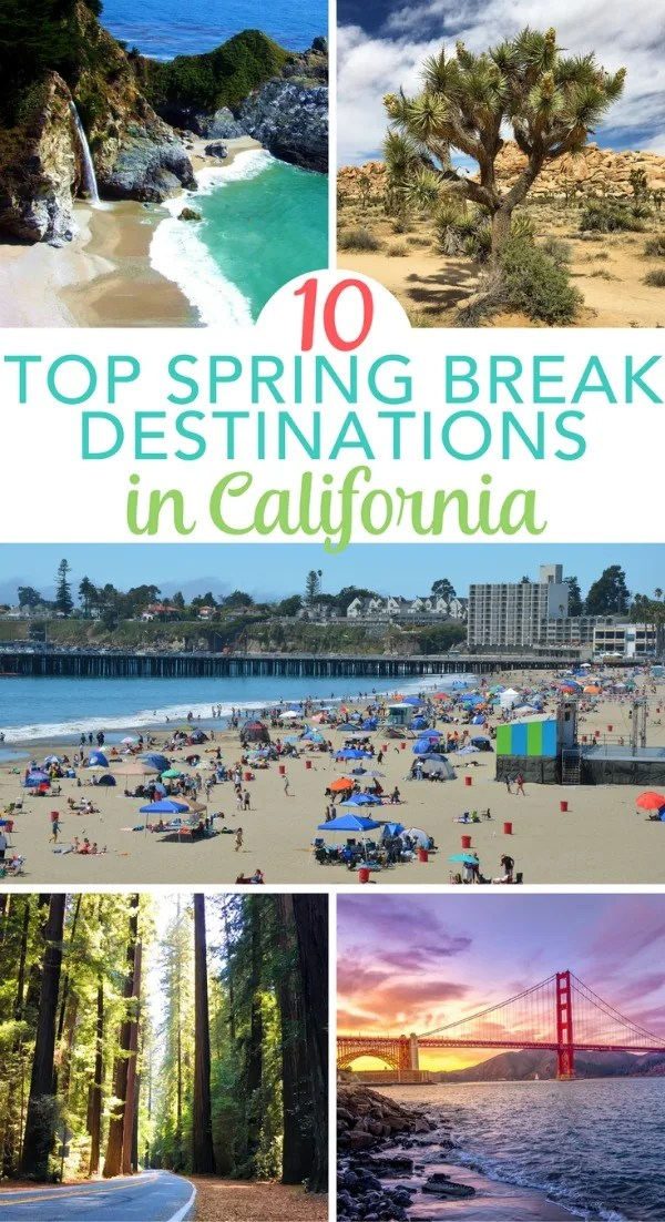 Where to travel for spring break-6837