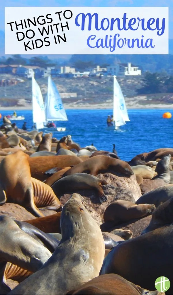 Visiting Monterey, California with kids? The top activities and things to do, from local beaches to the Aquarium to outdoor adventures in Big Sur.