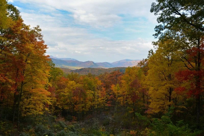 National Parks in Fall - Smoky Mountain National Park