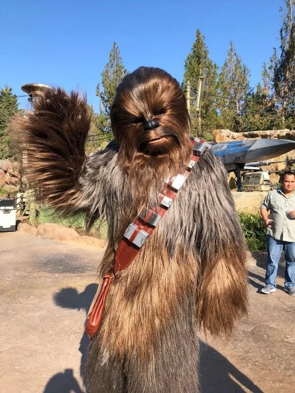 Star Wars Galaxys Edge Disneyland - Chewie