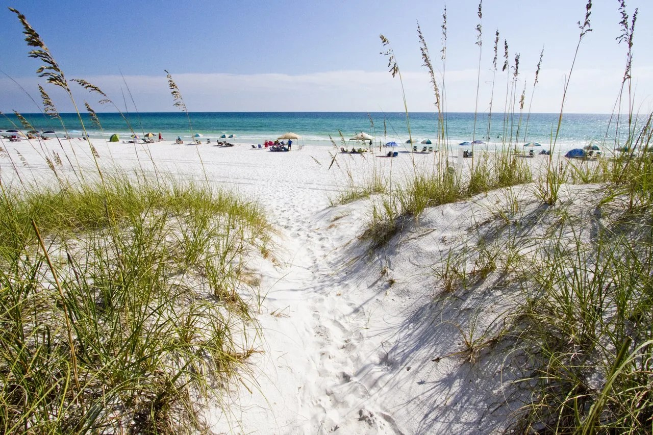 South Walton County Florida CVB - Dunes