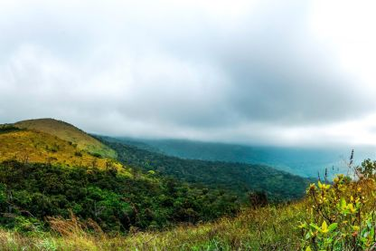 Dreamy Mysore to Wayanad Tour Package - 3 Nights & 4 Days