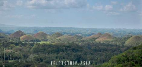 chocholate-hills-bohol-trip-to-trip2