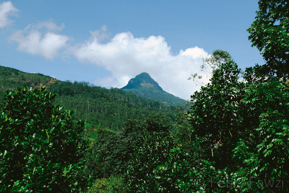 adams-peak-sri-lanka-by-febry-fawzi-27