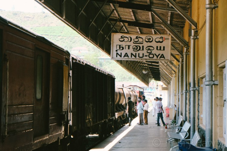 train-ride-in-sri-lanka-by-febry-fawzi-13